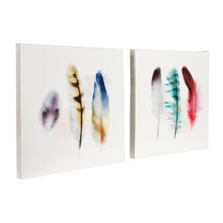 'Three Feather Study' Multicolored on Soft White with High-gloss Finish 2-piece Canvas Art