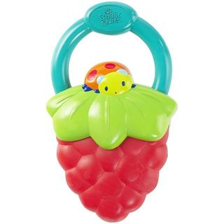 Bright Starts Multi-color Plastic Vibrating Teether