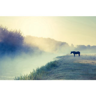 Marmont Hill 'Horse in the Fog' Painting Print on Wrapped Canvas