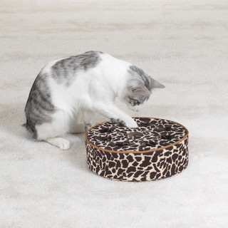 Savvy Tabby Wild Time 10.5-inch Disc Teaser Cat Toy