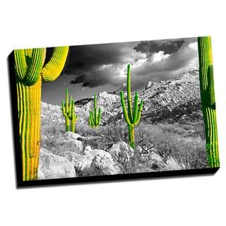 Cactus Color Splash Printed Framed Canvas