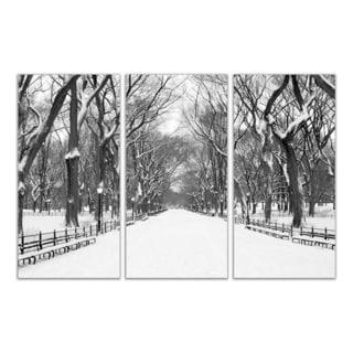 Central Park Beautiful Destinations Wall Decor