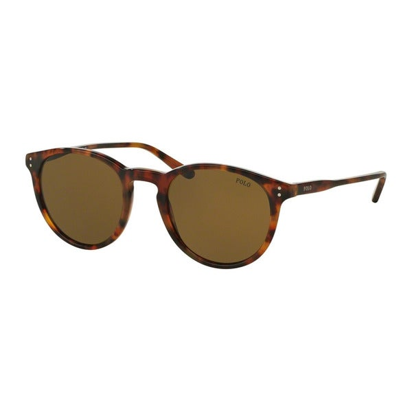96582cb154 Polo Ralph Lauren Men  x27 s PH4110 501773 Havana Plastic Phantos Sunglasses