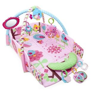Bright Starts Pretty in Pink Sweet Songbirds Baby's Play Place