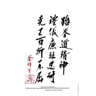 General Choi 'Tenets of Taekwondo' Korean Karate 11-inch x 17-inch Display Plaque|https://ak1.ostkcdn.com/images/products/12003502/P18881260.jpg?impolicy=medium