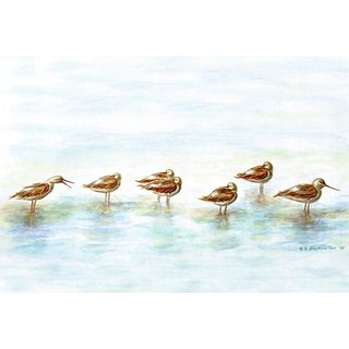 Betsy Drake Coastal Avocets Multicolored Polyester Doormat
