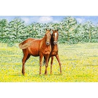 Betsy Drake Garden Pets Polyester Horses Door Mat