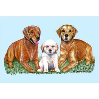 Betsy Drake Pet Retriever Door Mat