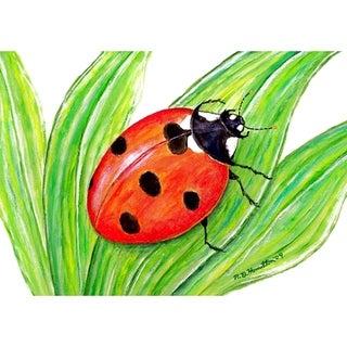 Garden Ladybug Door Mat