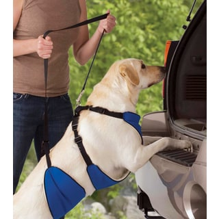 Guardian Gear Lift and Lead Blue Nylon 4-in-1 Dog Harness
