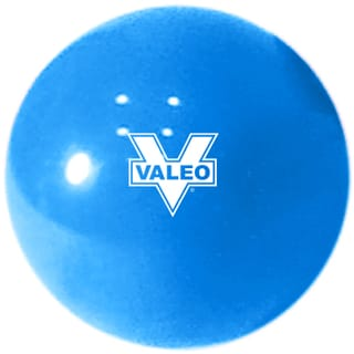 Valeo 6-pound Weighted Fitness Ball