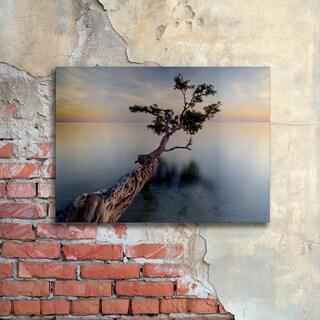 Moises Levy 'Water Tree XIV' Floating Brushed Aluminum Art