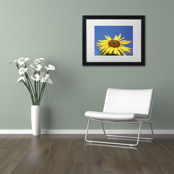 Kurt Shaffer 'Facing the Sun II' Matted Framed Art