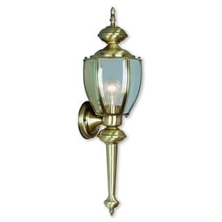 Livex Lighting Outdoor Basics Gold Brass 1-Light Outdoor Wall Lantern