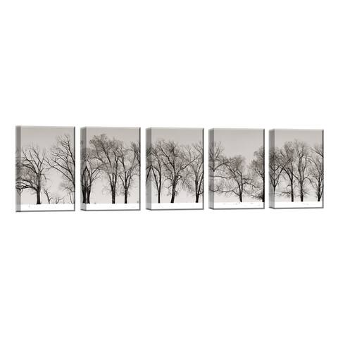 Winter Trees' 5-Pc Nature Photography Canvas Print Set