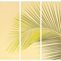Empire Art 'Palm Leaf' 3-piece Unframed Fine Art
