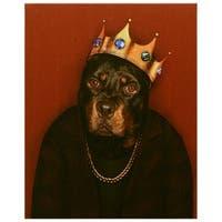 Empire Art Pets Rock 'Big Doggie' High Resolution Giclee Printed Canvas