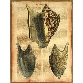 Empire Art 'Antiquarian Shells 1' Fresco Printed on Hand-applied Plaster Jute