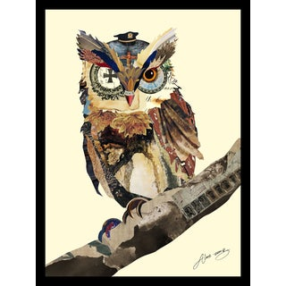 Empire Art Alex Zeng 'The Wisest Owl Collage' Framed Art