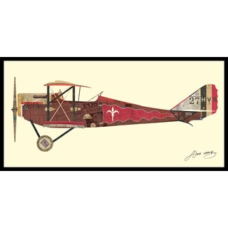 Empire Art Alex Zeng 'Antique Biplane #2' Framed Collage Art