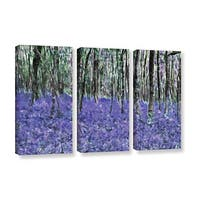 Ken Skehan's 'Natural Abstract Bluebell Woods' 3-Piece Gallery Wrapped Canvas Set - multi