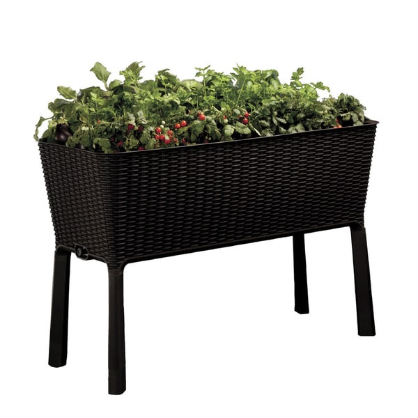 Keter Easy Grow Patio Flower Plant Planter Raised Elevated