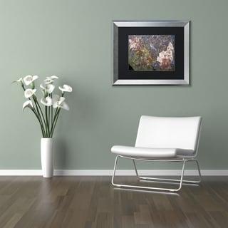 Kurt Shaffer 'Natural Abstract' Matted Framed Art