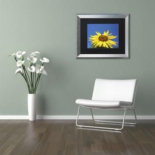 Kurt Shaffer 'Facing the Sun II' Matted Framed Art