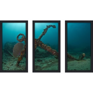 Craig Dietrich 'Copenhagen Anchor' 3-piece Underwater Photography Framed Plexiglass