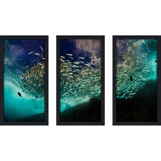 Craig Dietrich 'Cool School' 3-piece Underwater Photography Framed Plexiglass