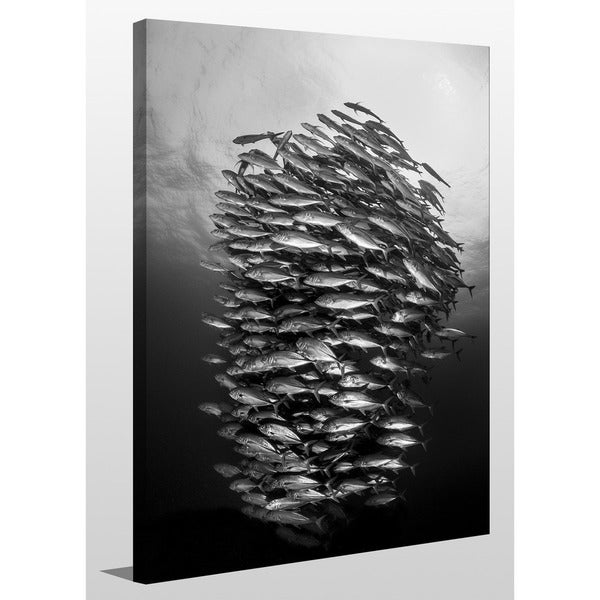 Craig Dietrich 'Tornado' Underwater Photography Canvas Wall Art