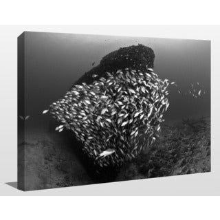 Craig Dietrich 'Tornado 2' Underwater Photography Canvas Wall Art