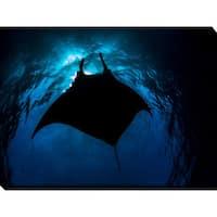 Craig Dietrich 'BlackManta' Underwater Photography Canvas Wall Art