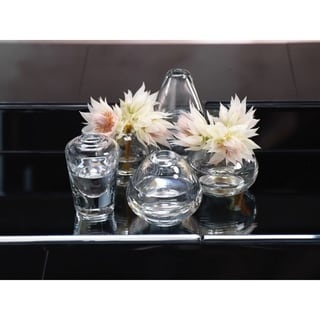 Arabella Glass Vase Clear (Set of 5)