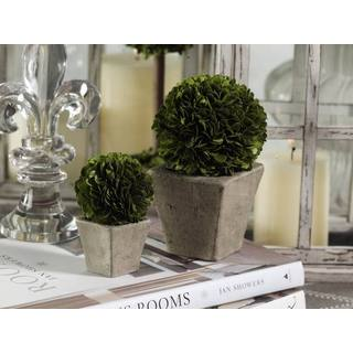 Round Boxwood Topiary Set (Set of 2)