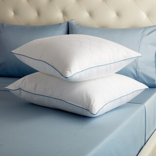 Sealy Posturepedic LiquiLoft Gel Support Standard/Queen Pillow (Set of 2)