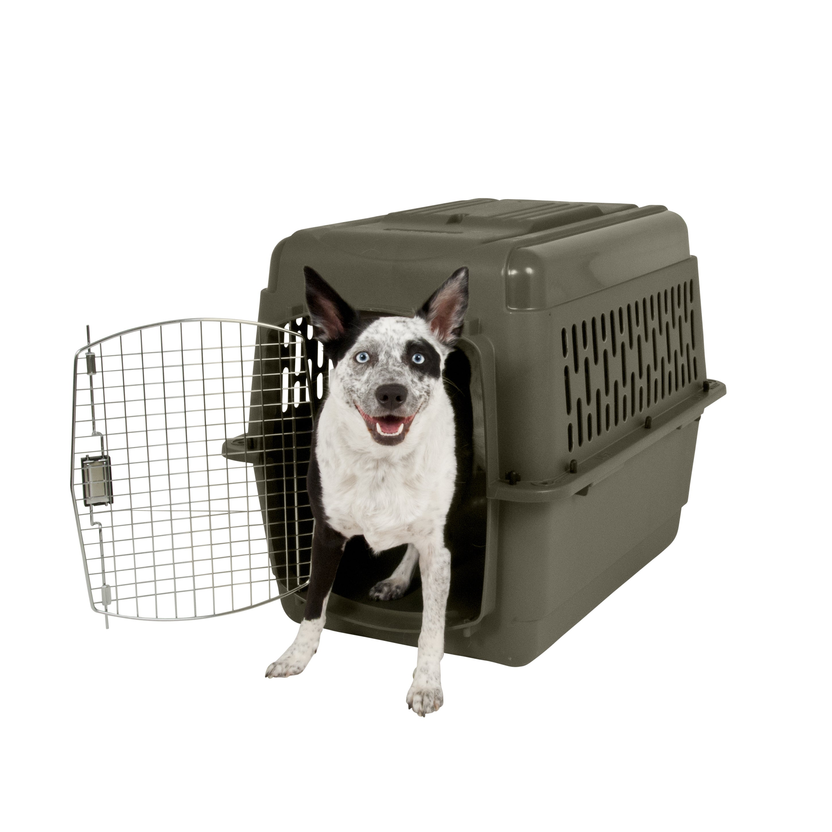Aspen Pet Porter Fashion Dog Kennel and Portable Carrier ...