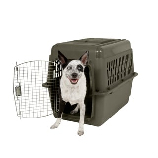 Aspen Pet Porter Fashion Dog Kennel and Portable Carrier