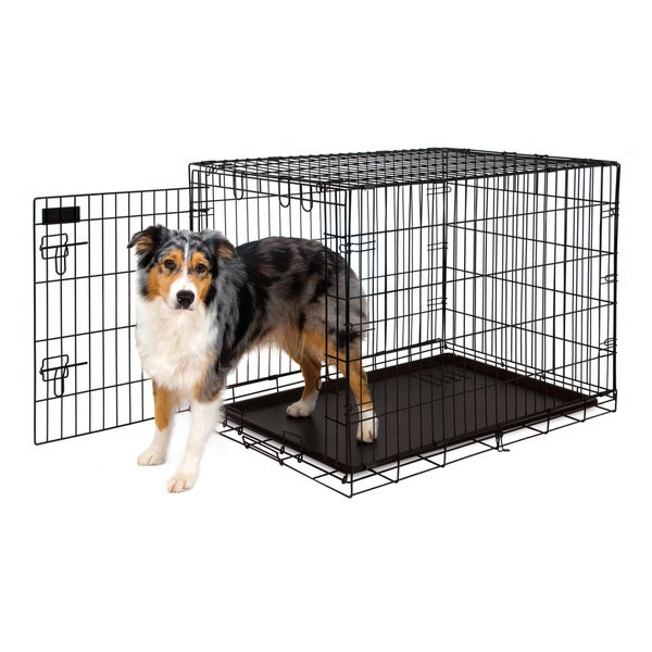 Shop Petmate Training Retreat Wire Dog Crate & Kennel - Free ...