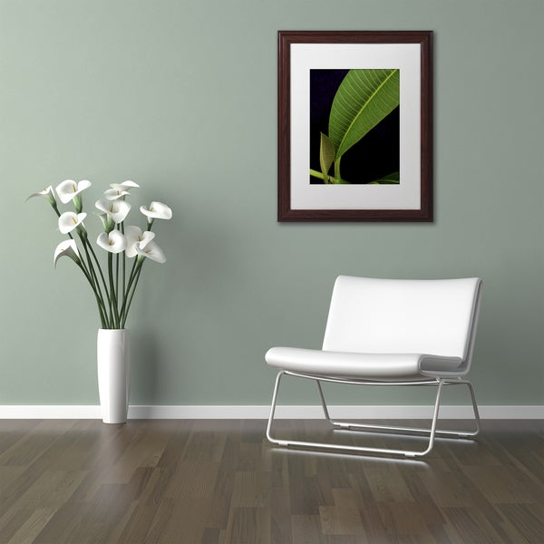 Kurt Shaffer 'Plumeria Leaf Abstract' Matted Framed Art