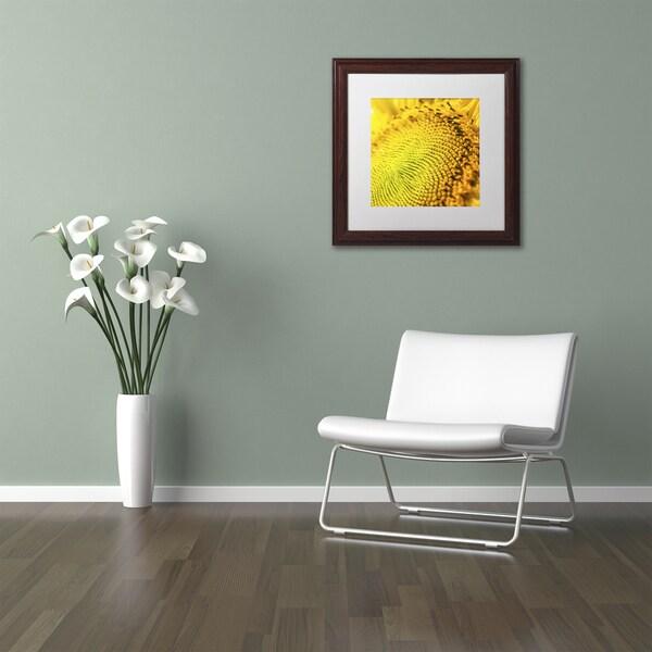 Kurt Shaffer U0027Glistening Sunflower Nectaru0027 Matted Framed Art   Free  Shipping Today   Overstock.com   18950298