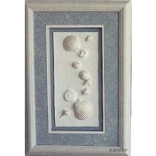 Cast Paper 'Beach Shells I' 12x18 Indoor or Outdoor Option Available