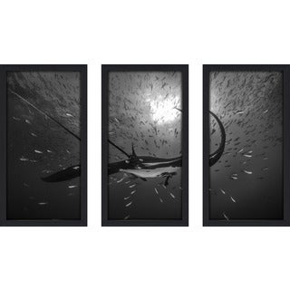 Craig Dietrich 'Flying' Underwater Photography Framed Plexiglass Set of 3