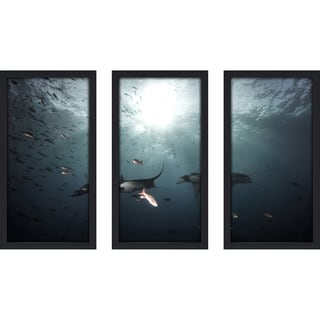 Craig Dietrich 'Follow the Leader' Underwater Photography Framed Plexiglass Set of 3