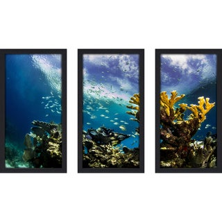 Craig Dietrich 'Keys Reef' Underwater Photography Framed Plexiglass Set of 3