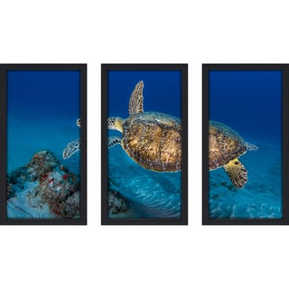 Craig Dietrich 'Painted Turtle' Underwater Photography Framed Plexiglass Set of 3