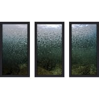 Craig Dietrich 'School of Fish' Underwater Photography Framed Plexiglass Set of 3