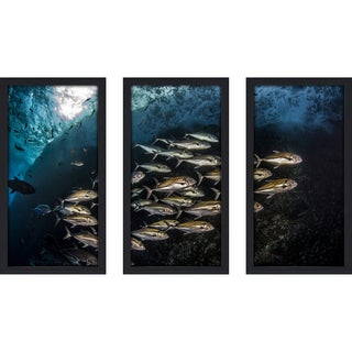Craig Dietrich 'Silver & Gold' Underwater Photography Framed Plexiglass Set of 3