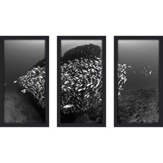 Craig Dietrich 'Tornado 2' Underwater Photography Framed Plexiglass Set of 3