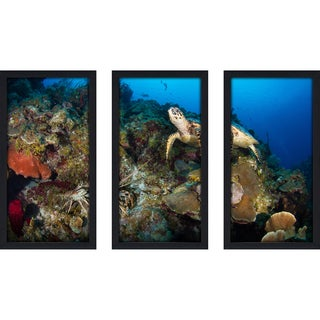 Craig Dietrich 'Underwater Friends' Underwater Photography Framed Plexiglass Set of 3